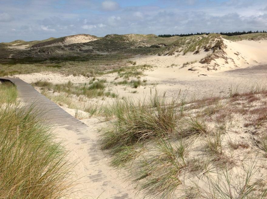 Miles of dunes