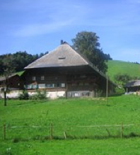 Our Black Forest retreat