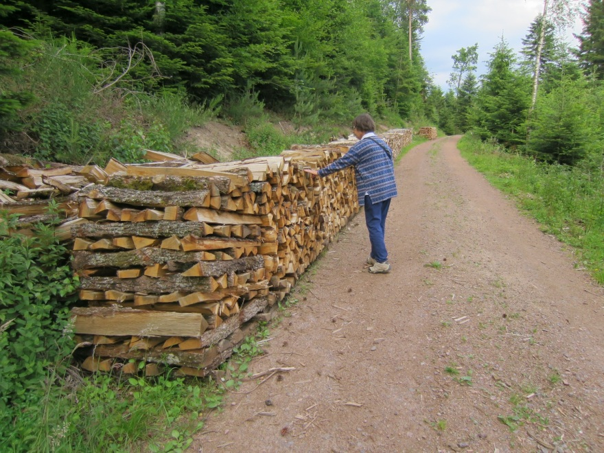 We passed neatly stacked split firewood, what the ranchers use in winter, if not all year.
