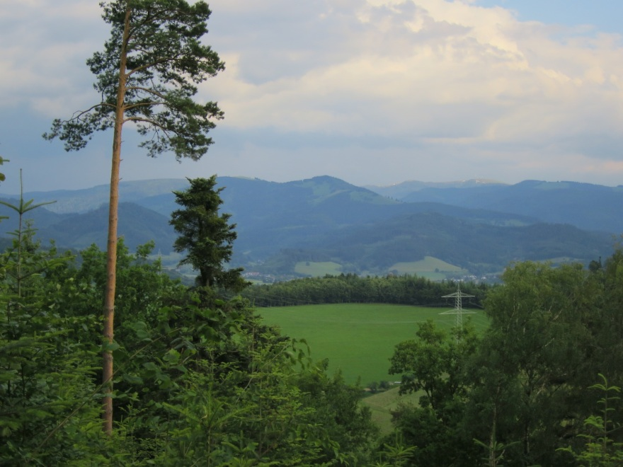 Here's a view from one of our walks looking toward Switzerland over to  the highest peaks in the Black Forest.