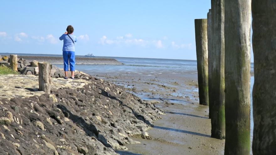 Edge of the Sea   (photo by Suzi)