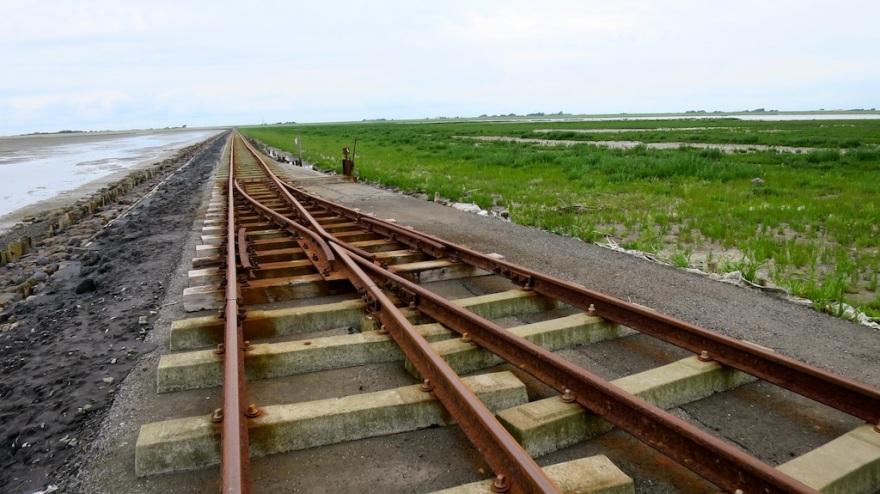 Lore Tracks   (photo by Suzi)