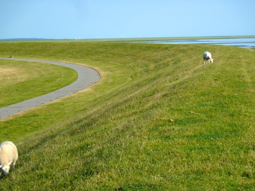 Dike Along the North Sea