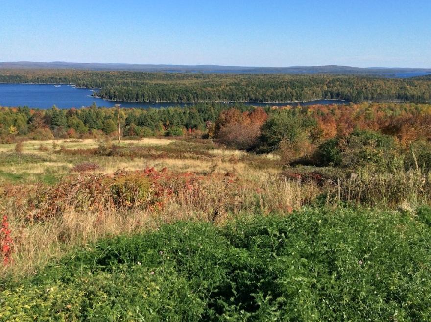 Lakes drain into the St. John River.