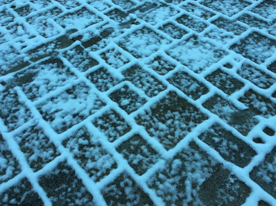 Snowy detail