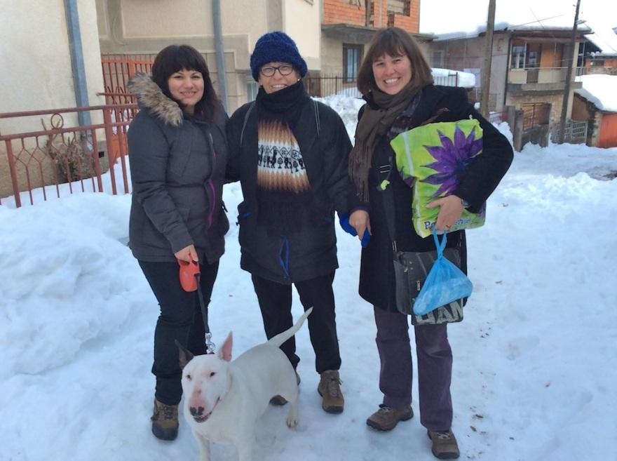 Jovana raises purebred bull terriers.
