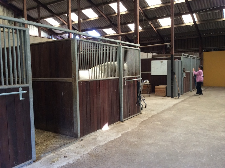 The huge stables hold 16 horses.