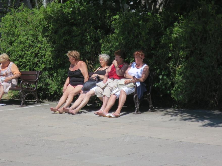 Ladies soaking up the sun