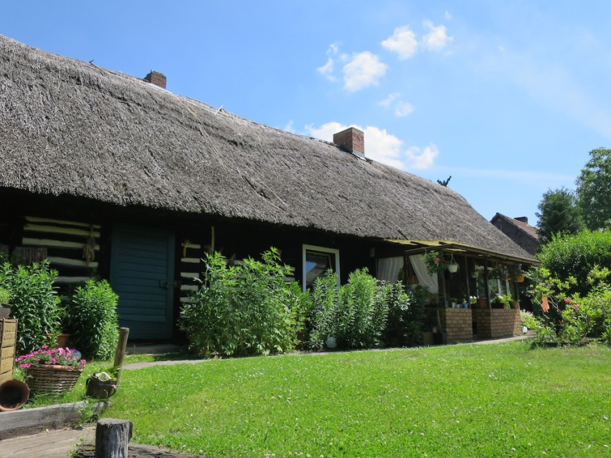 Thatched roof home