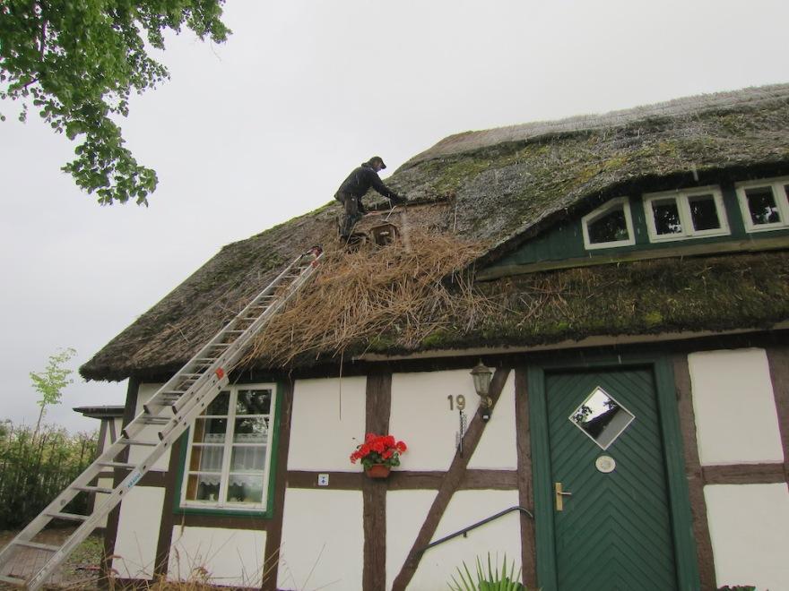 Repairman fixing the thatch
