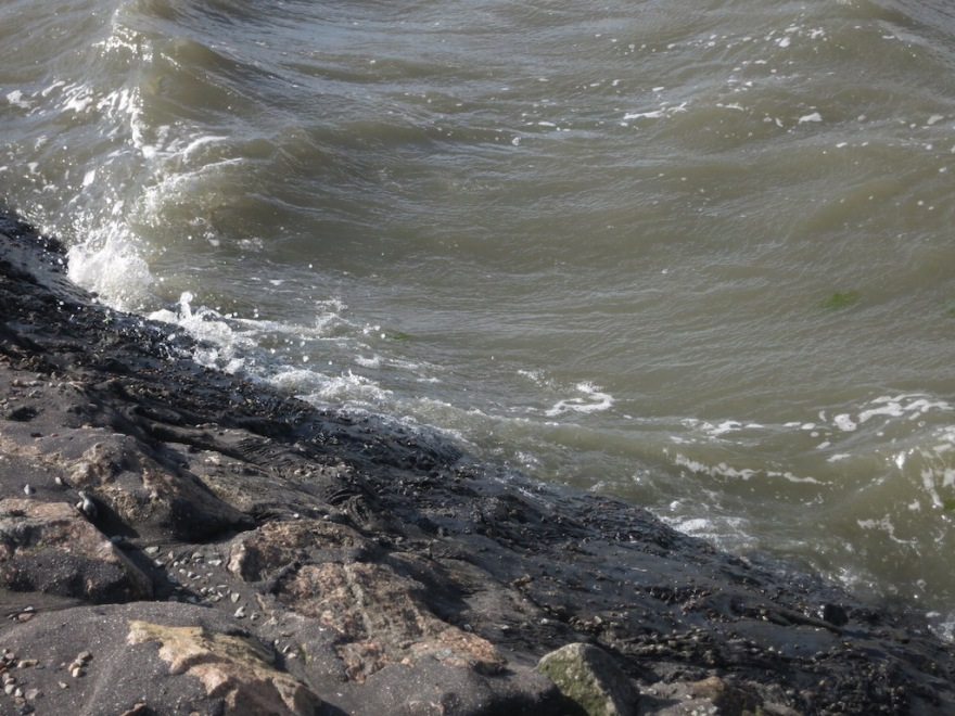 big swells