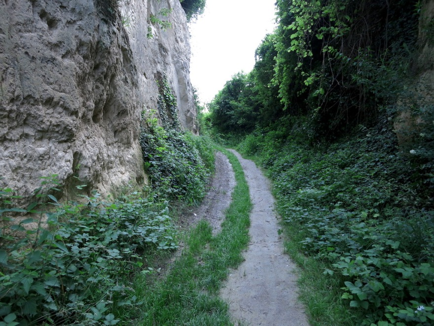 A preserved ancient route in the loess.