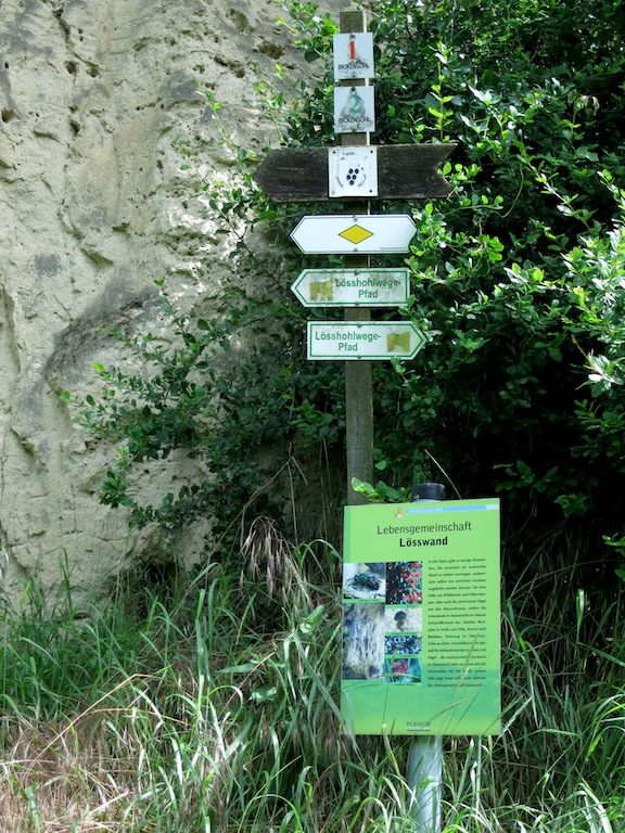 Trail routes and informative places describing the preservation of historic works.