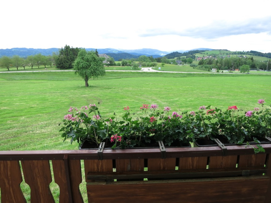 View from the balcony toward the snow patched highest peak in the Black Forest.