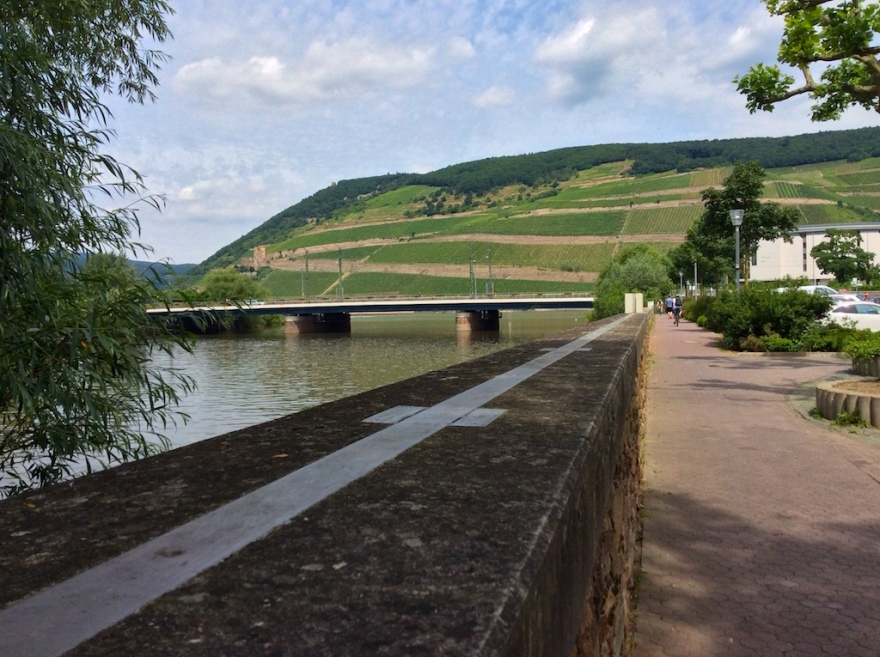 The Nahe River meets the Rhine beyond the bridge.