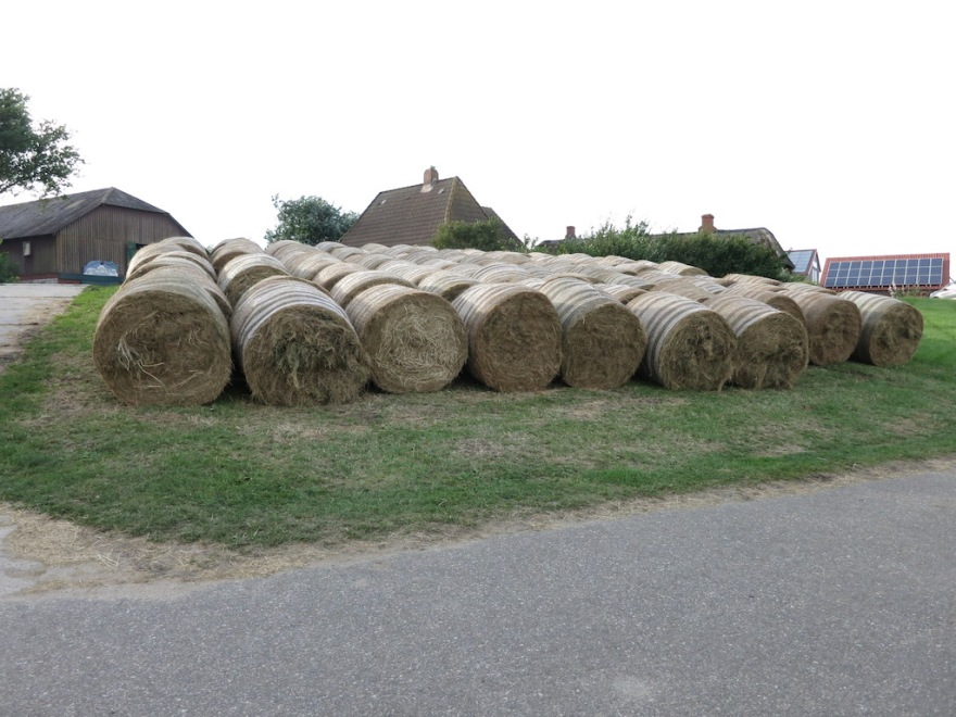 Hay ready for winter needs