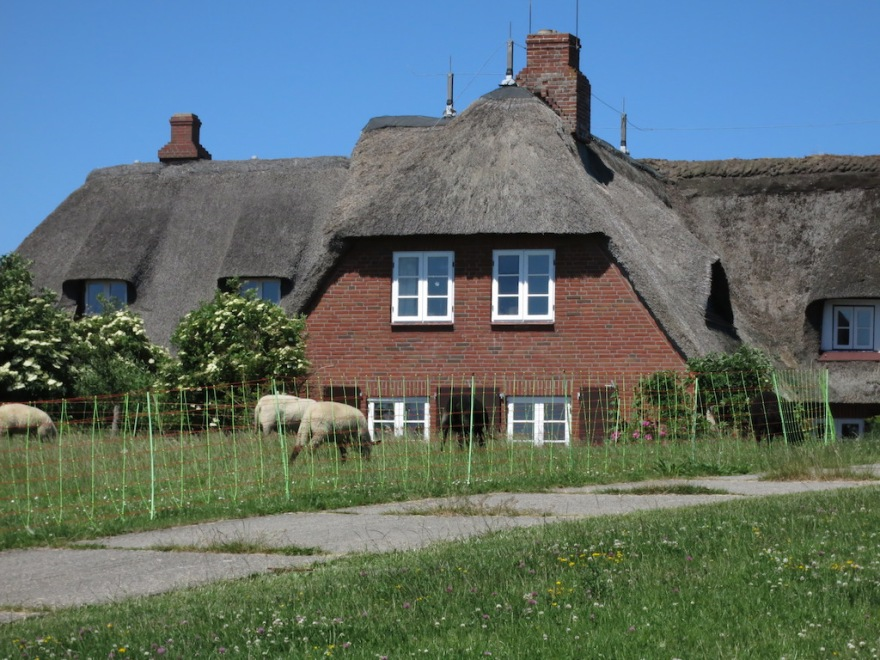 Many dwellings, some more than 200 years old, have thatched roofs.