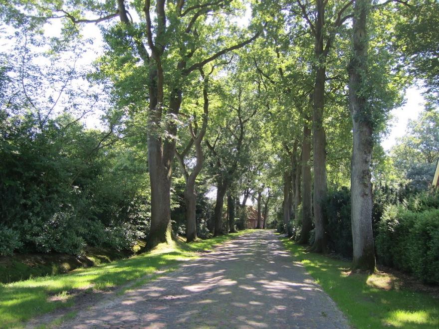 Narrow cobblestone lane to our abode