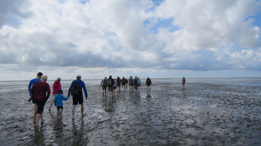 Off goes the group at low tide.
