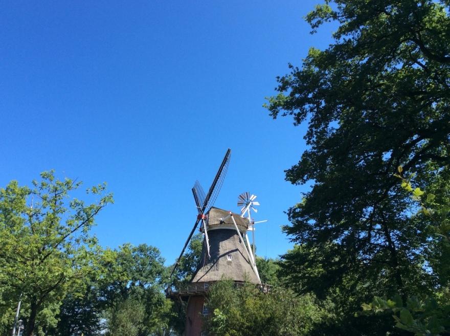 North Coast windmill
